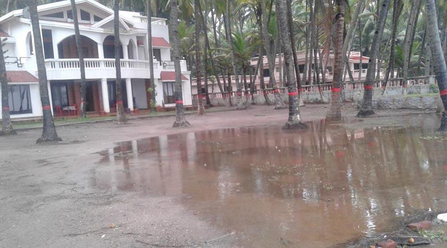 Nine Palm Bungalow Awas Beach Alibaug Maharashtra: Palm Beach Paradise In Murud-janjira Rooms, Rates, Photos