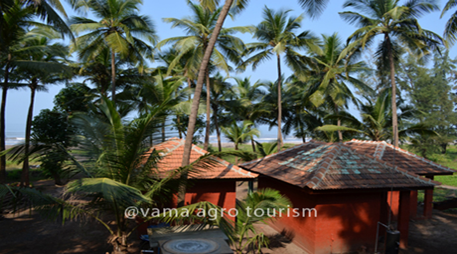 vama tourism near dapoli