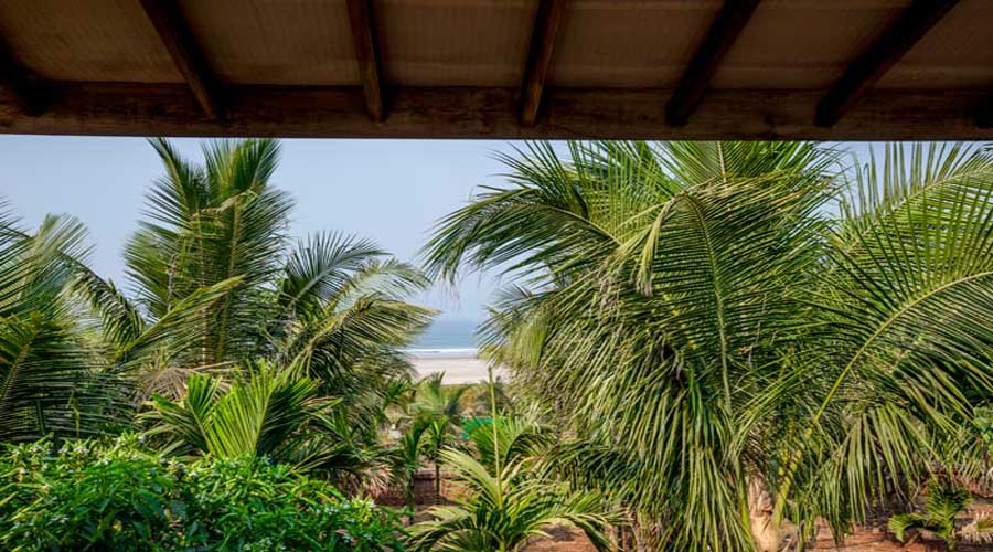 Resorts in ganpatipule Beach Front Villas in ganptipule hotelsinkonkan.in