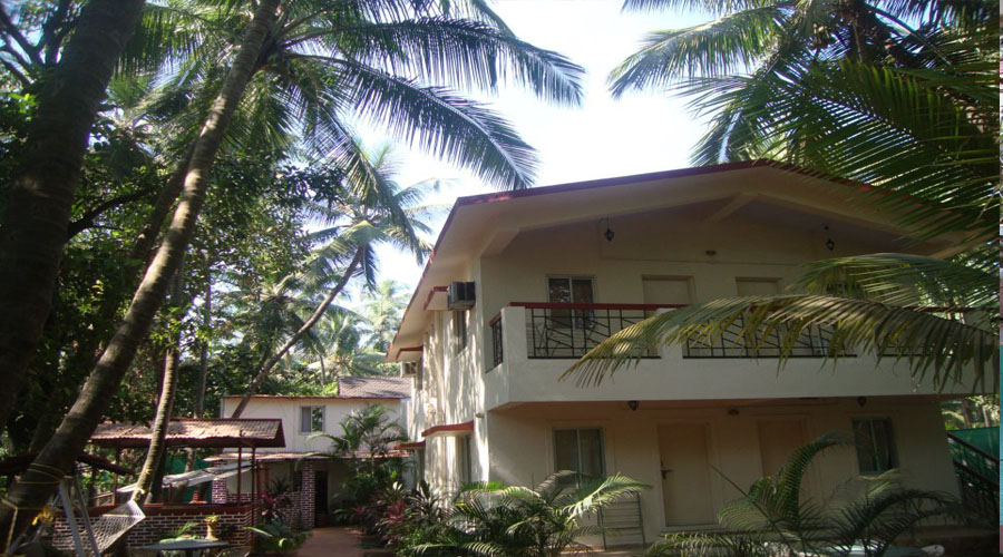 Shingle Resort nagaon hotelsinkonkan.in