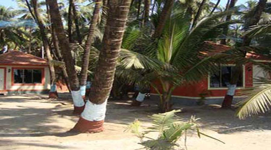 hotels in murud janjira hotelsinkonkan.in